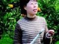 《德育报·学前教育》胡红梅:绿色家园