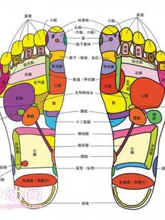 脚底穴位图参考 长